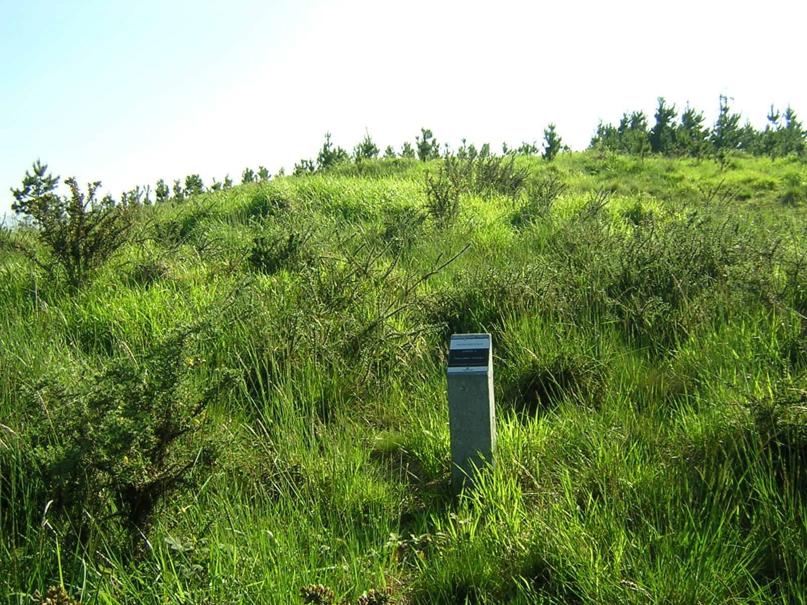 Dolmen Loatzu 2 Trikuharria
