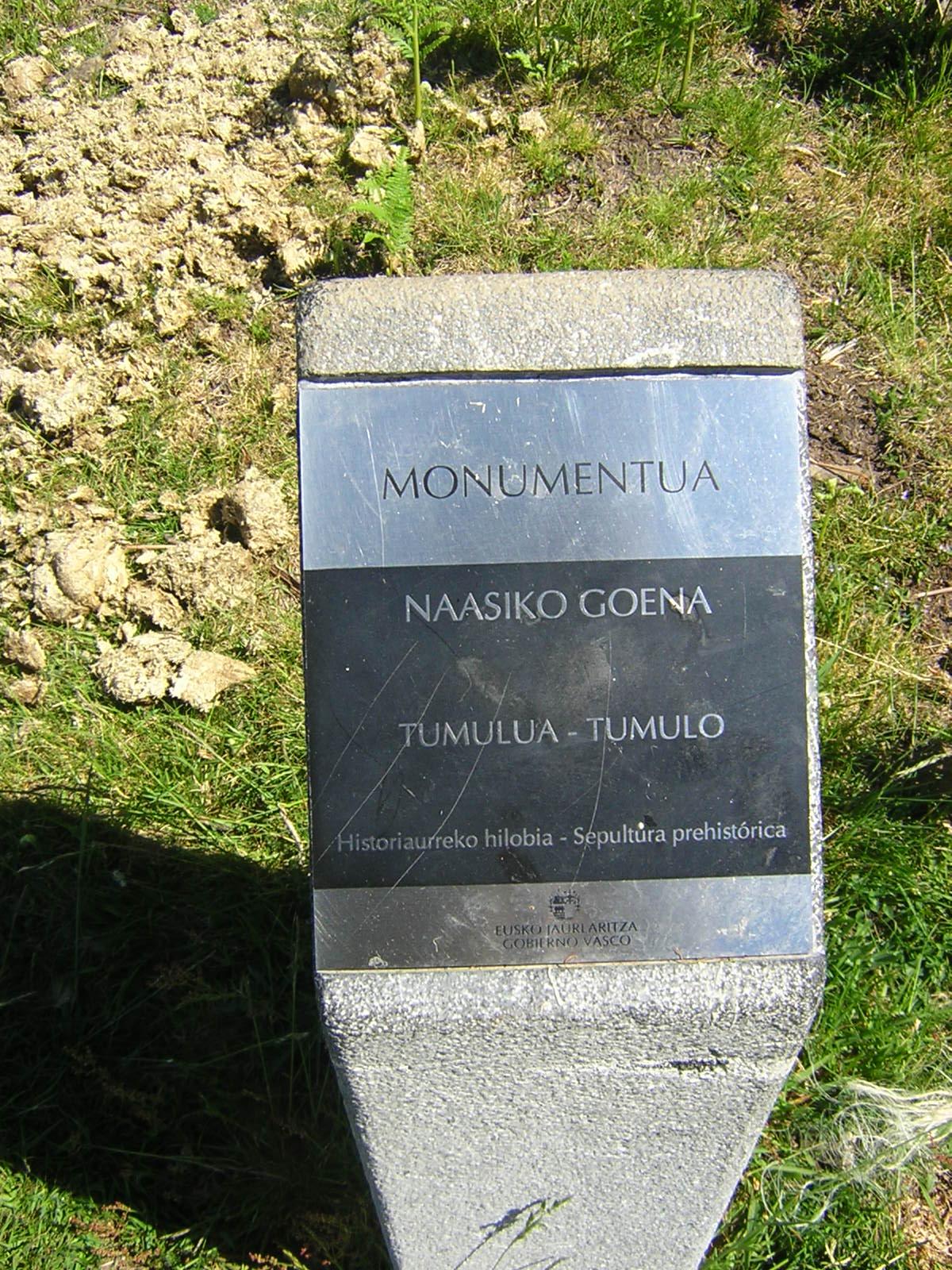 Túmulo Naasiko goena Tumuloa