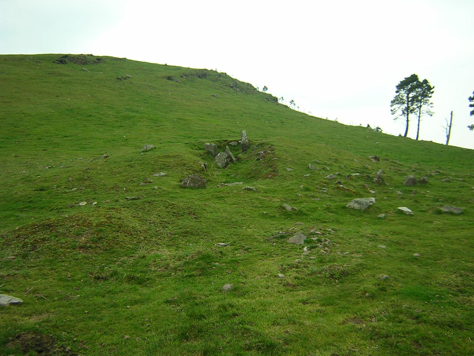 Dolmen Pozontarriko lepoa Trikuharria