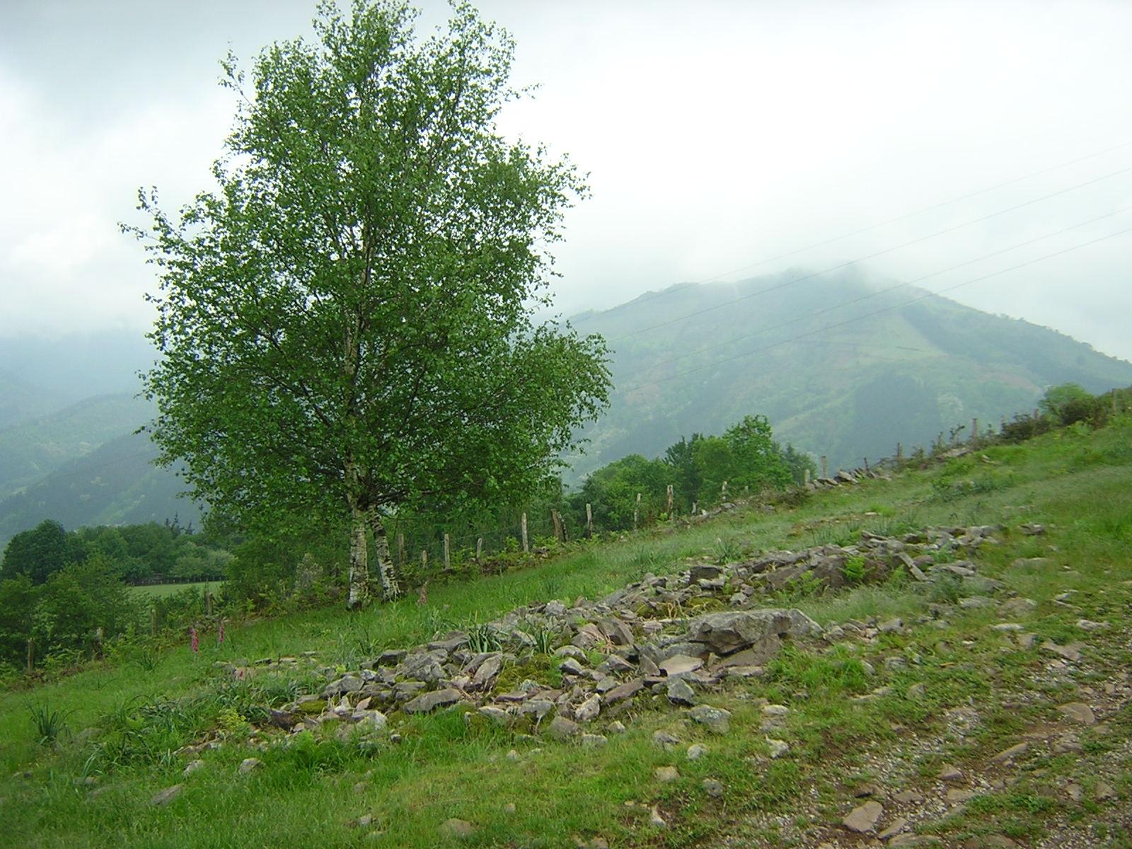 Dolmen Sagastietako lepua 2 Trikuharria